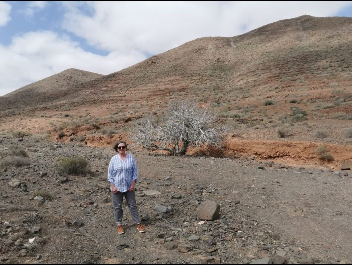 near Guisguey Fuerteventura
